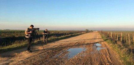 Birding in Doñana