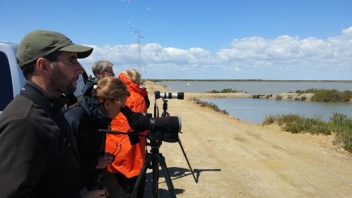 With an American group of birdwatchers in Bonanaza salt pans